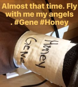 Torey Burston - Gene and Honey Hunt